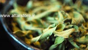 گیاهان دارویی که فشار خون را بالا میبرد