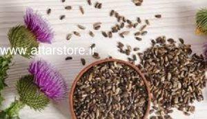 گیاه دارویی برای کبد چرب