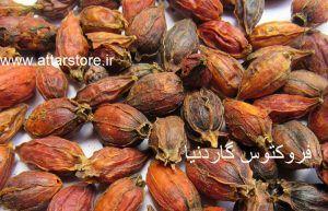 گیاه دارویی برای پریود شدن