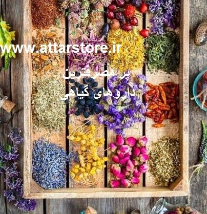 پرمصرف ترین داروهای گیاهی